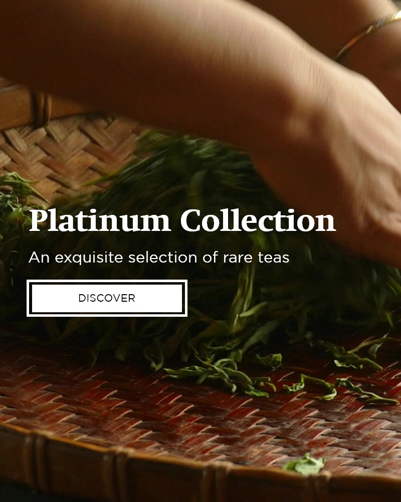 Platinum Collection from AVANTCHA